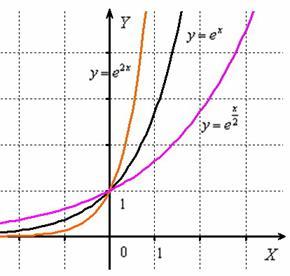 Сжатие и растяжение экспоненциальной функции